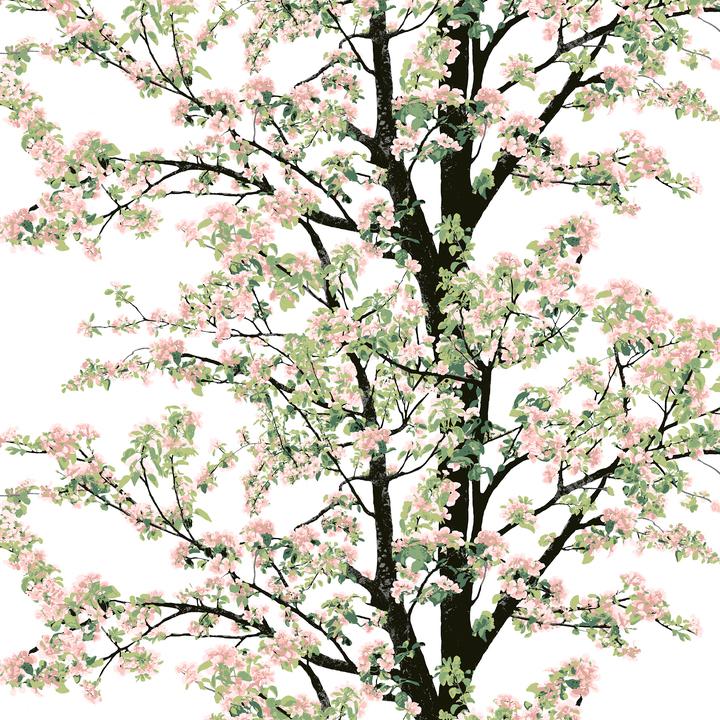Vallila kangas, Omenapuu Rosa lev. 150cm (V149V), Kankaat, VALLILA kankaat