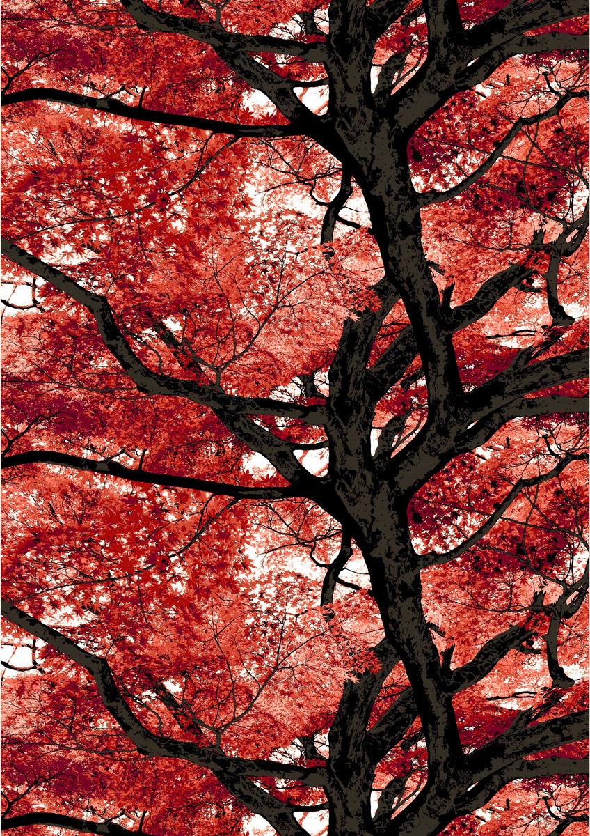 Vallila kangas, Vaahtera punainen  lev. 150cm (V91V), Kankaat, VALLILA kankaat