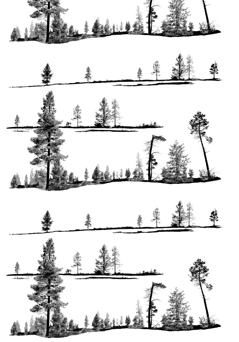 Vallila kangas, Kero valoverho lev. 150cm (V84V), Kankaat, VALLILA kankaat