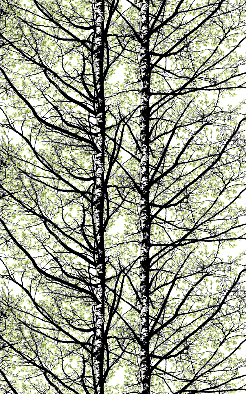 Vahakangas Pihapuut, Vallila (V140V), Vahakankaat ja pitsiliinat, VALLILA vahakankaat